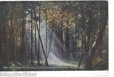 Muir Woods by Moonlight,Mt. Tamalpais Railway-California - Cakcollectibles