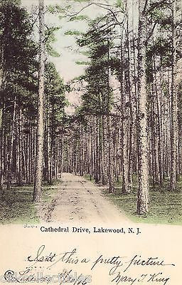Cathedral Drive-Lakewood,New Jersey 1906 - Cakcollectibles