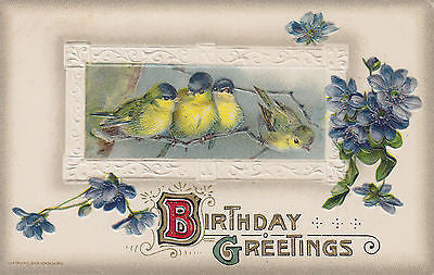 """Birthday Greetings"" Beautiful Birds John Winsch Postcard - Cakcollectibles - 1"