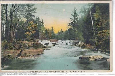 The Wild Cat River and Falls-Jackson,New Hampshire - Cakcollectibles