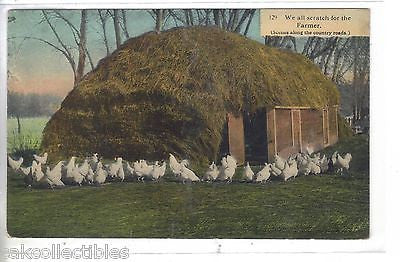 """We All Scratch For The Country Farmer""-Chickens 1912 - Cakcollectibles"