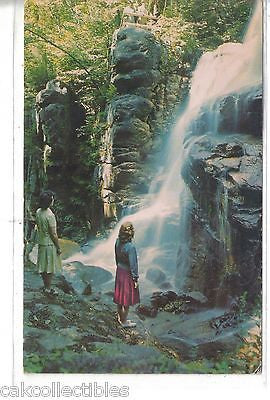 Avalanche Falls,Flume Gorge-White Mountains,New Hampshire 1965 - Cakcollectibles