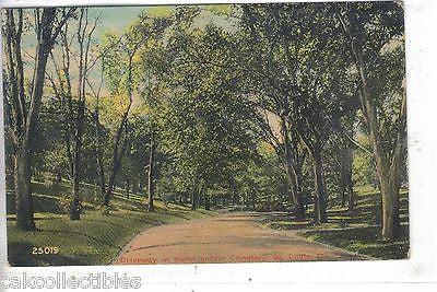 Driveway in Bellefountain Cemetery-St. Louis,Missouri 1913 - Cakcollectibles