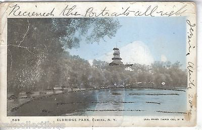Eldridge Park-Elmira,New York 1906 - Cakcollectibles
