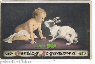 """Getting Acquainted""-Baby and Bunny - Cakcollectibles - 1"