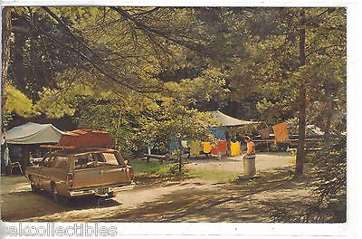 A Beautiful Campsite in New York's Adirondack Mountains 1970 - Cakcollectibles