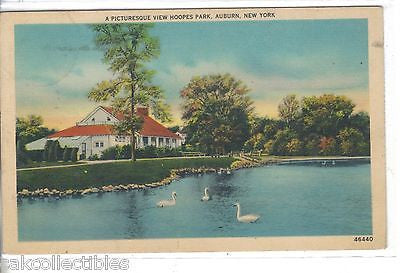 A Picturesque View,Hoopes Park-Auburn,New York 1940 - Cakcollectibles