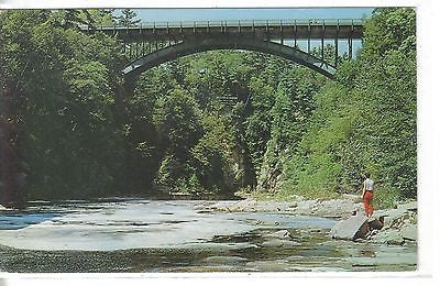 Highway Bridge Over Famous Ausable Chasm Ausable Chasm, N. Y. - Cakcollectibles