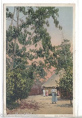 A Native House on A Coffee Plantation-The Cuba Railroad - Cakcollectibles
