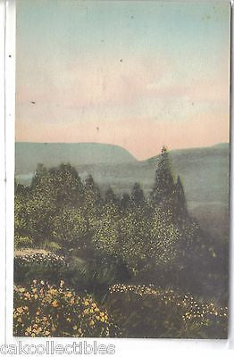 Delaware Water Gap from Pocono Manor Inn-Pennsylvania (Hand Colored) - Cakcollectibles