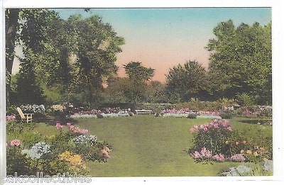 A View of The Garden,Andover Inn -Andover,Massachusetts (Hand Colored) - Cakcollectibles