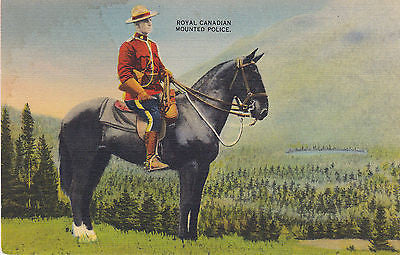 Royal Canadian Mounted Police In Canadian Forest Postcard - Cakcollectibles - 1