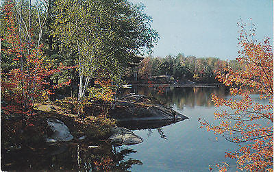 Moose Lake In Georgian Bay Provincial Forest -Ontario, Canada Postcard - Cakcollectibles - 1