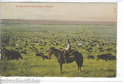 Grazing on The Cattle Range at Sunset - Cakcollectibles