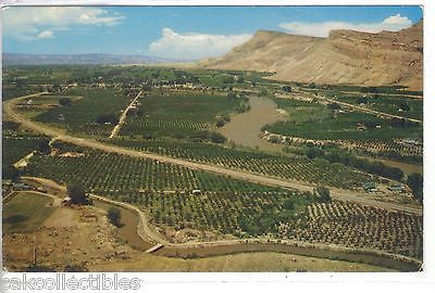 Aerial View of The Grand Valley-Colorado - Cakcollectibles