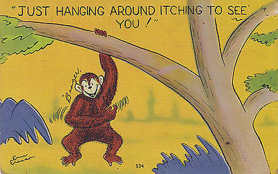 """Just Hanging Around Itching To See You !"" Linen Comic Postcard - Cakcollectibles - 1"