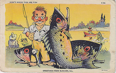 """Here's Where Fish Are Fish"" Linen Comic Postcard - Cakcollectibles - 1"