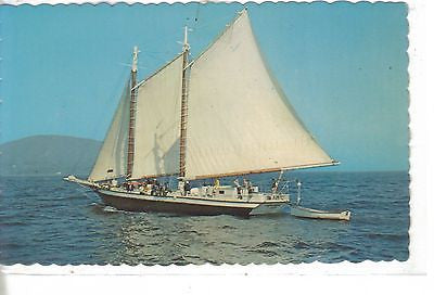 Schooner Mercantile Out of Camden, Maine - Cakcollectibles