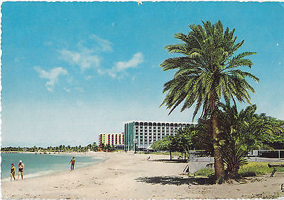 Modern Hotels On Palm Beach Bermuda Postcard - Cakcollectibles - 1
