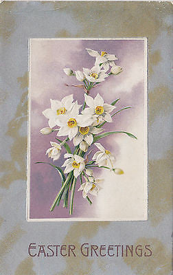 """Easter Greetings"" Daffodiles John Winsch Postcard - Cakcollectibles - 1"