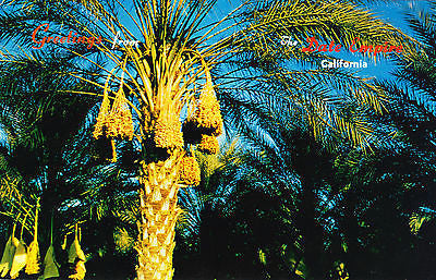 Greetings From The Dale Empire Calif. Postcard - Cakcollectibles