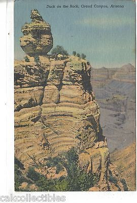 Duck on The Rock-Grand Canyon,Arizona 1960 - Cakcollectibles