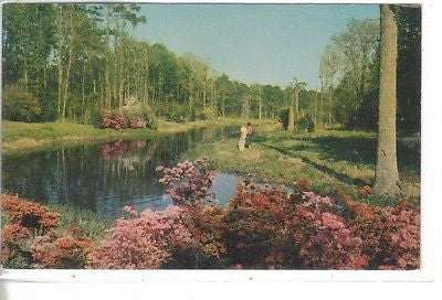 Lagoon At Beauvior, Jefferson Davis Shrine, Biloxi, Mississippi - Cakcollectibles