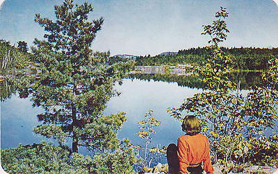 Cedar Hill Resort - Shebandowan, Ontario, Canada Postcard - Cakcollectibles - 1