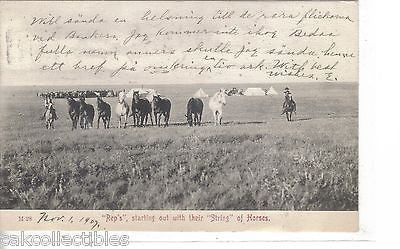 """Reps"",starting out with thier ""String"" of Horses 1907 - Cakcollectibles - 1"