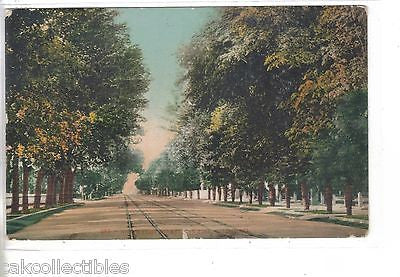 North First Street-San Jose,California 1910 - Cakcollectibles - 1
