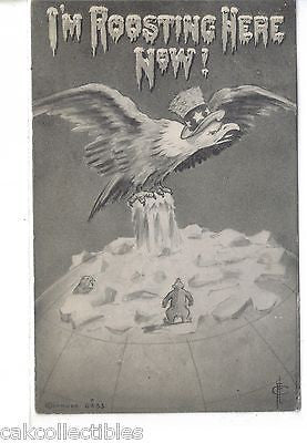 "American Eagle on North Pole-""I'm Roosting Here Now!"" - Cakcollectibles - 1"