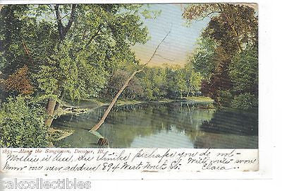 Along The Sangamon-Decatur,Illinois 1906 - Cakcollectibles