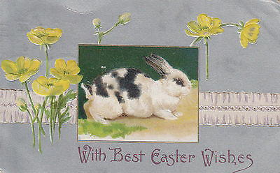 """With Best Easter Wishes"" Bunny John Winsch Postcard - Cakcollectibles - 1"