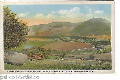 Burial Place of John Burroughs,showing Catskill Mt. Range near Roxbury,New York - Cakcollectibles