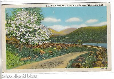 Wild Cat Valley and Carter Notch-Jackson,White Mts.,New Hampshire - Cakcollectibles