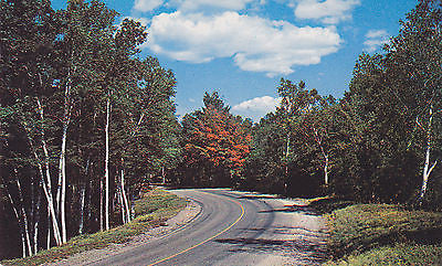 Sussex, New Brunswick, Canada Postcard - Cakcollectibles - 1