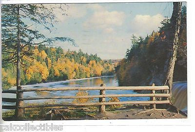 Looking Downstream from The Upper Tahquamenon Falls in Michigan's U.P. 1956 - Cakcollectibles