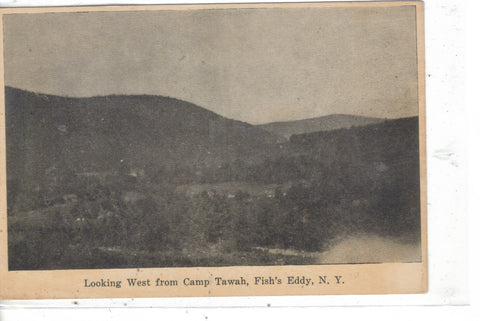 Looking West from Camp Tawah-Fish's Eddy,New York Post Card - 1