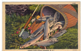 Greetings from Goshen,New York-Creel of Fish Post Card - 1