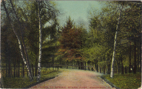 Road to Spring,Stark Park-Manchester,New Hampshire 1913 - Cakcollectibles - 1