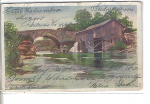 Old Mill-Ferndale,New York 1906 - Cakcollectibles - 1