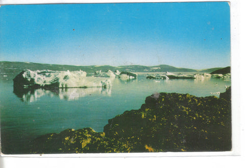 Ice Bergs in North Star Bay-Thule,Greenland - Cakcollectibles - 1