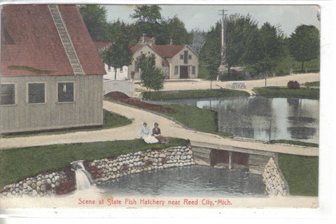 Scene at State Fish Hatchery near Reed City,Michigan 1909 - Cakcollectibles