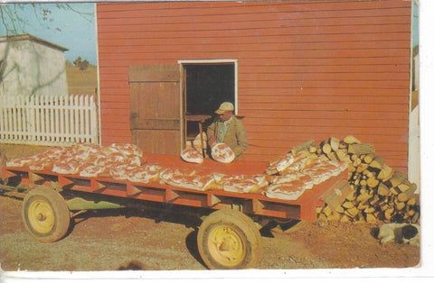 Country Hams Ready For The Smoke House Vintage Postcard Post Card - 1