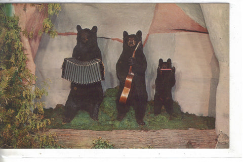 3 Musical Bears and Albino Deer,Henkelmann's Museum-Woodruff,Wis. Post Card - 1