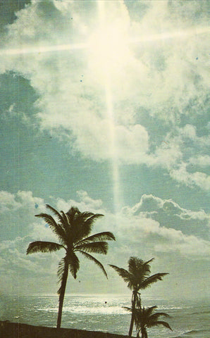 Moonbeams over San Juan,Puerto Rico Postcard