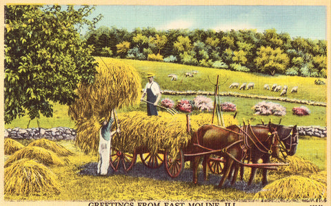 Retro Postcard Greetings from East Moline,Illinois