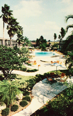 Holiday Inn - Tampa,Florida Old Postcards