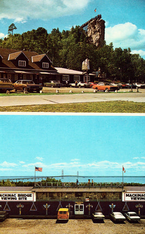 Castle Rock and Souvenir Barn in St. Ignace,Michigan Vintage Postcard