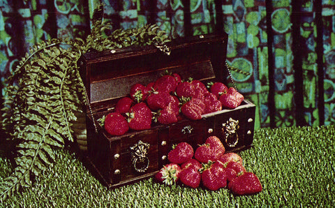 Box of Strawberries,Plant City,Florida Vintage Postcard